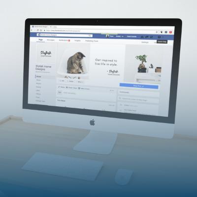 Gestion des médias sociaux, création de contenu et conception d'infolettre | Synapse, Agence de Marketing Web